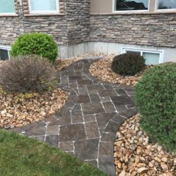paver walk way in Shrub area